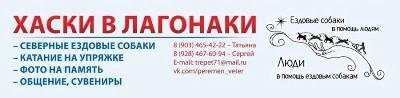 Ветер Перемен - Хаски в Лагонаки